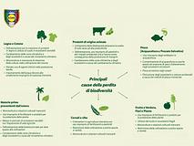 Giornata della Terra: l'impegno di Lidl per preservare la biodiversità