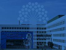Scopri InfoCamere attraverso il Bilancio di Sostenibilità 2020