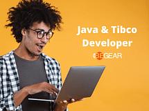 JAVA & TIBCO Developer Junior